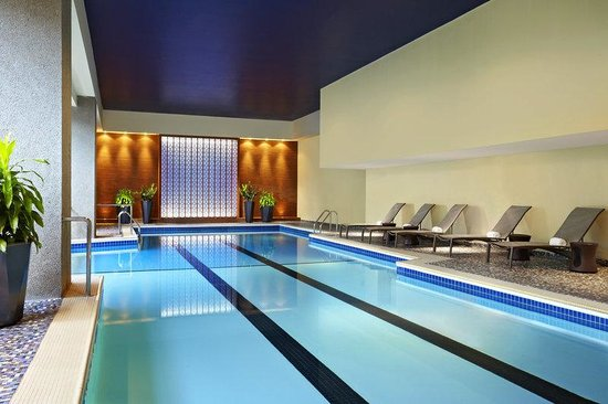 Sheraton Le Centre Montreal Hotel: Pool