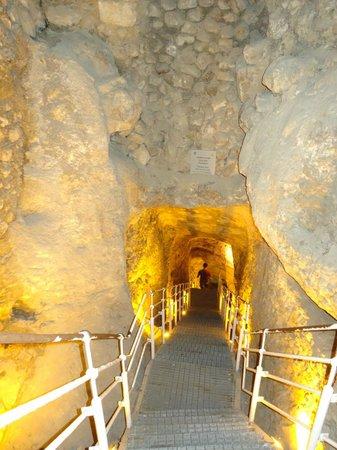 Hezekiah's Tunnel - Siloam Tunnel: Warren's shaft--entrance to Hezekiah's Tunnel