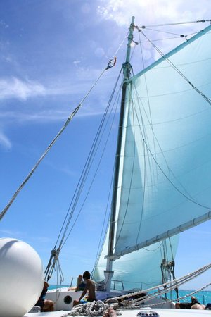 Sun Charters: They really do sail! (part of the time)