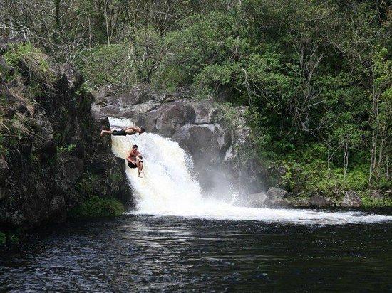 Aloha Island Tours