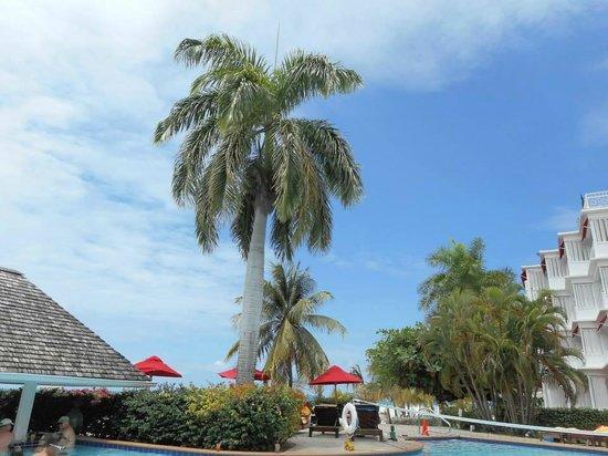 Royal Decameron Montego Beach: Pool area