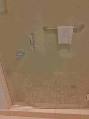 HYATT house Chicago/Naperville/Warrenville: walk-in shower
