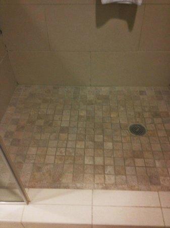 HYATT house Chicago/Naperville/Warrenville: inside of walk-in shower
