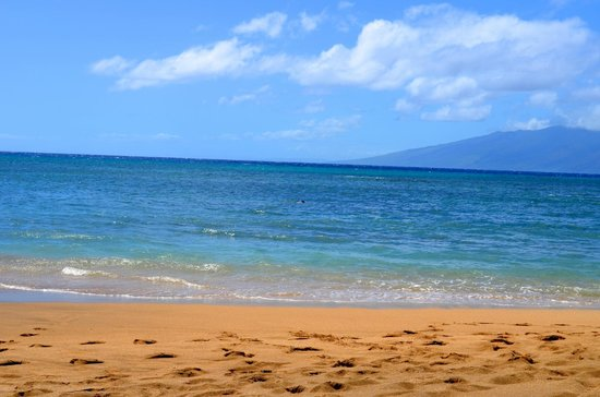 "Valley Isle Resort 401 & 402: Kahana beach ""Our Beach"""