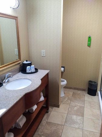 Hampton Inn & Suites Richmond: Spotless Bathroom