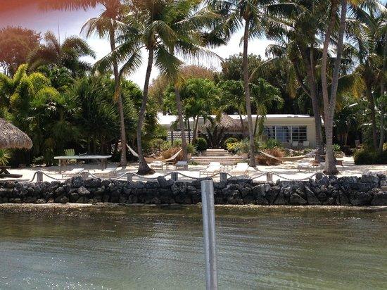 Kona Kai Resort, Gallery & Botanic Garden : Resort from the Dock