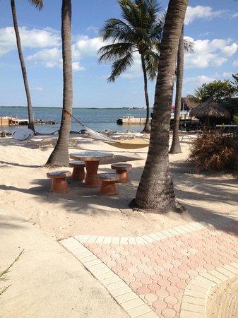 Kona Kai Resort, Gallery & Botanic Garden : Beach and relaxing hammocks