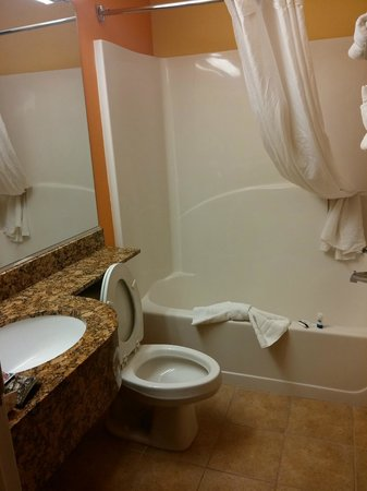Microtel Inn & Suites by Wyndham Anderson/Clemson: Microtel bathroom