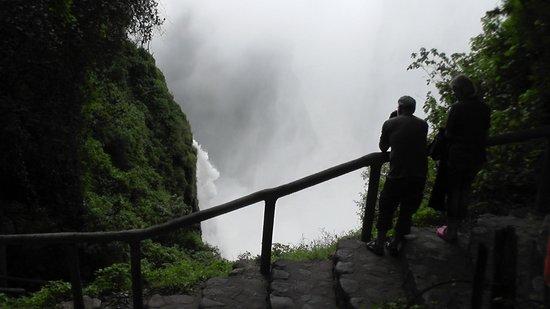 Mosi-oa-Tunya / Victoria Falls National Park: Victoriafallen