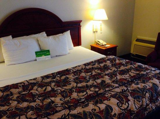 Magnuson Hotel Hattiesburg: Bedroom