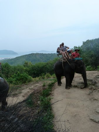 Siam Safari: The view on the elephant ride