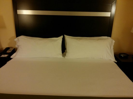 Holiday Inn Express Greenville I-85 and Woodruff Road : Bed