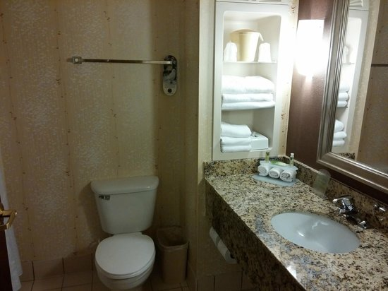 Holiday Inn Express Greenville I-85 and Woodruff Road : Bathroom