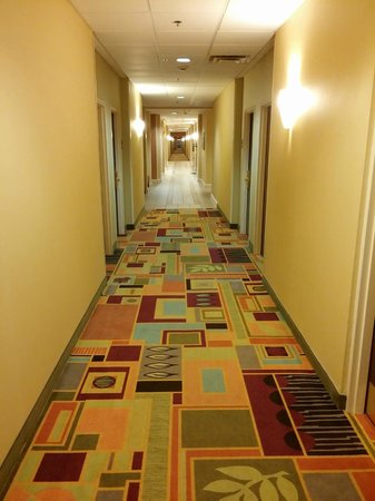 Holiday Inn Express Greenville I-85 and Woodruff Road: First floor hallway
