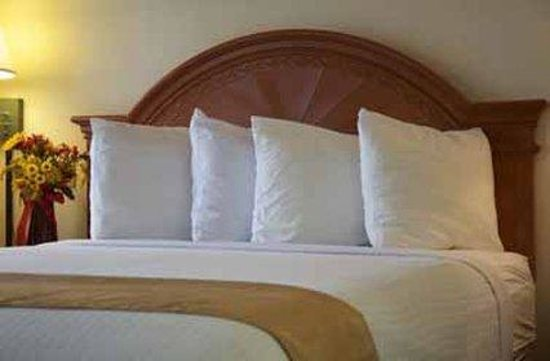 برشلونة سويتس: Guest Room