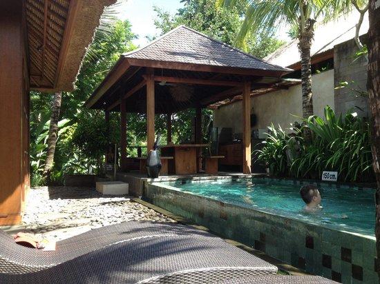 Luwak Ubud Villas: Villa 1