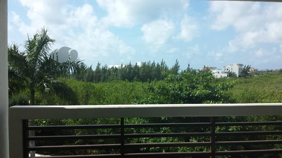 Secrets Silversands Riviera Cancun : View from room 1303. There is a pool below (sorry no pictures!)
