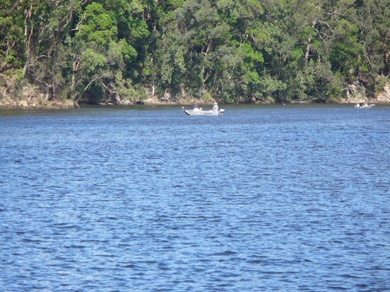 North Coast Holiday Parks Ferry Reserve: hubby and kids out fishing