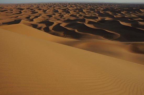 Hotel Kasbah Sahara Services : Sahara dunes