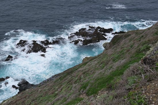 Point Sur State Historic Park: Looking Down