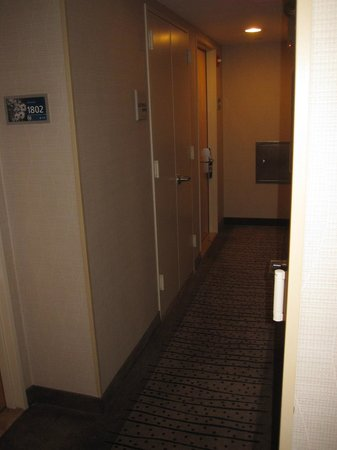 Hampton Inn Manhattan/Times Square South: Hallway
