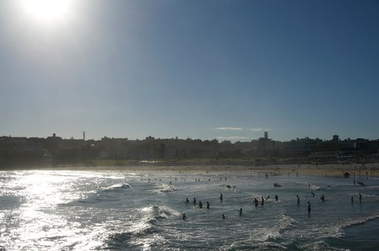 Bondi to Coogee Beach Coastal Walk: Beautiful beach