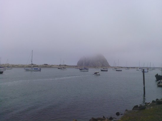 Bayfront Inn: Morro rock shrouded in mist