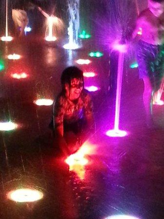 Sea World Resort: At the light show