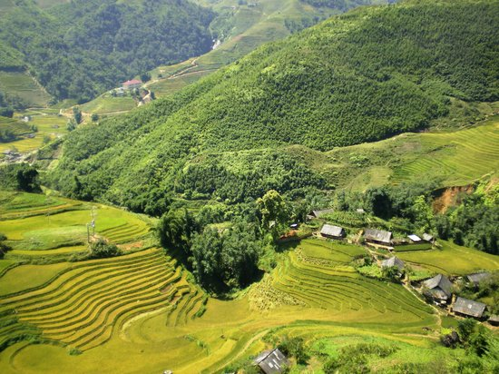 Muong Hoa Valley: www.muonghoavalley.com