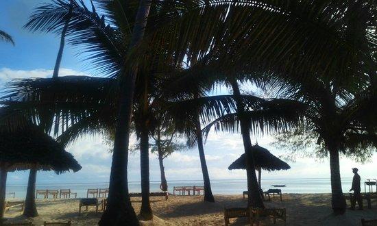 Dream of Zanzibar: beach