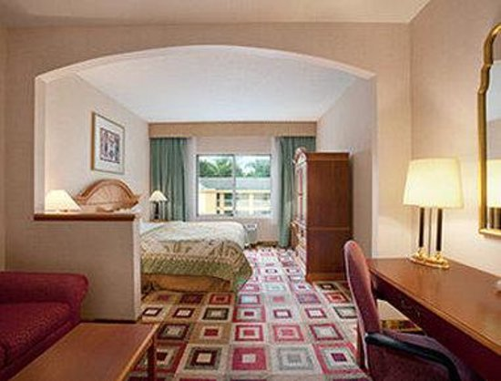 Days Inn & Suites Albany: Standard One King Bed Room