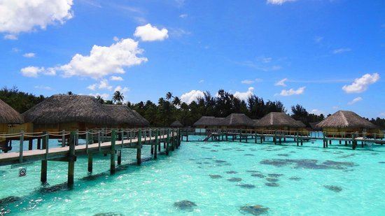 Bora Bora Pearl Beach Resort & Spa : The beautiful resort area near our bungalow!