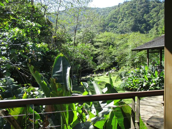 El Silencio Lodge & Spa: The view from the main lodge at breakfast, overlooking the creek below