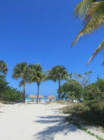 Be Live Experience Varadero : beach