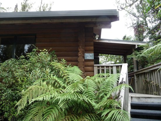 Rainforest Retreat: Outside of log cabin