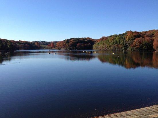 Lake Side Park Miyazawako