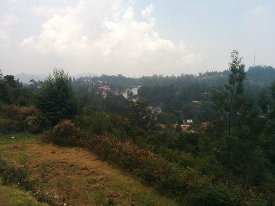 Surya Holidays Kodaikanal: View