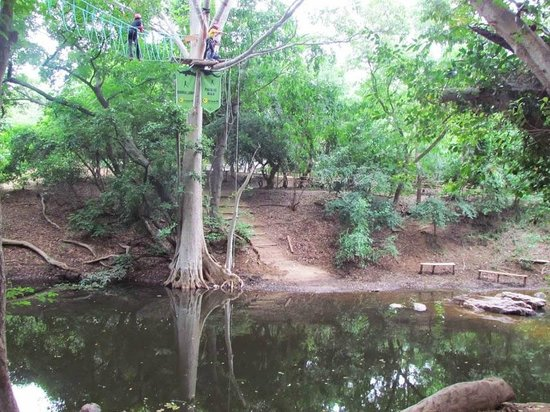Jungle Lodges - Bheemeshwari Nature & Adventure Camp: Area where burma loops and parallel walk happens