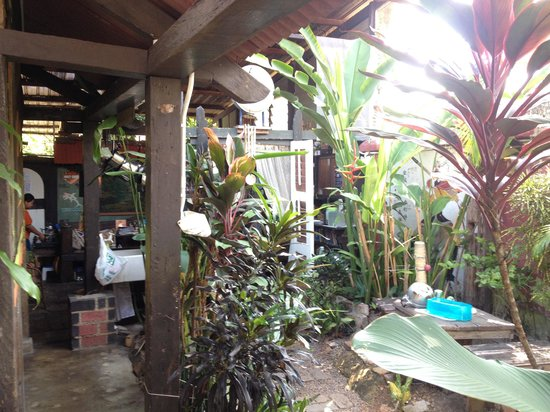 Emily Travellers' Home: A part of the small garden