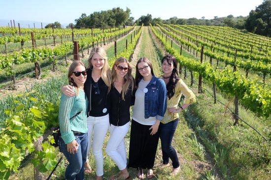 Estate vineyard walking tour with Sustainable Vine Wine Tours