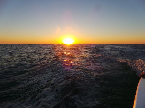Little Toot Dolphin Adventures: Sunset cruise on Little Toot, Clearwater Beach
