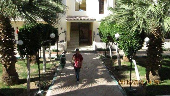 Sultana Beach Resort : наш отель
