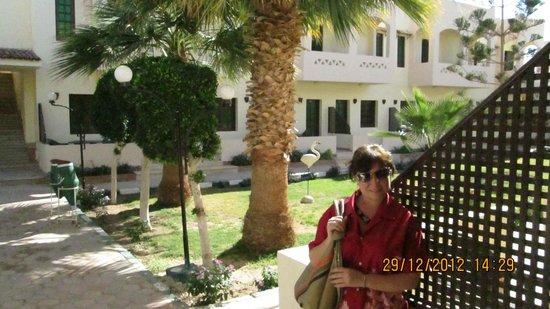 Sultana Beach Resort : зеленая территория