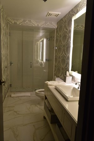 Silversmith Hotel Chicago Downtown: Our gorgeous bathroom!
