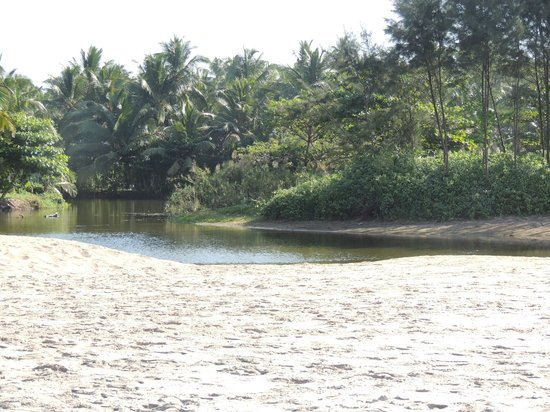 The Nattika Beach Resort: ein Backwater gleich neben dem Resort