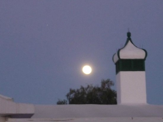 Canary Garden Club : Moon in Gran Canaria
