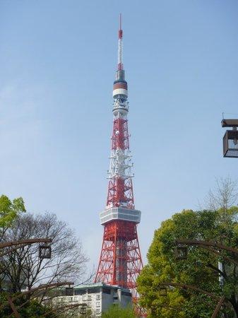 Shiba Park: 東京タワーが正面に見える。