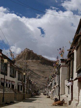 Monastère Palkhor et Stupa de Kumbum : View from Kumbum to Fort