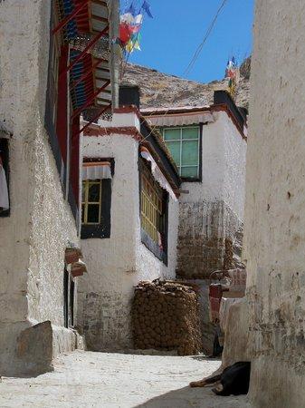Monastère Palkhor et Stupa de Kumbum : Part of the old town close by