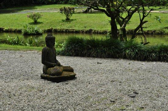 Byodo-In Temple: zen garden